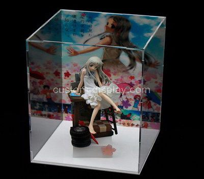Clear plastic doll cases