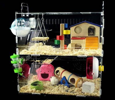 Best cage for a hamster