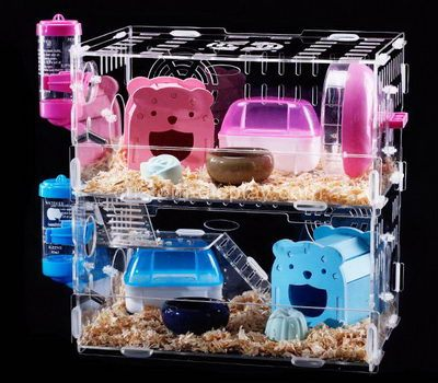 Best syrian hamster cage