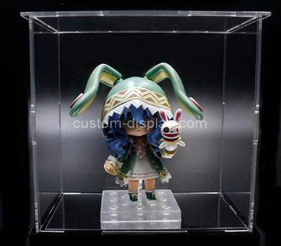Custom clear acrylic dull display case